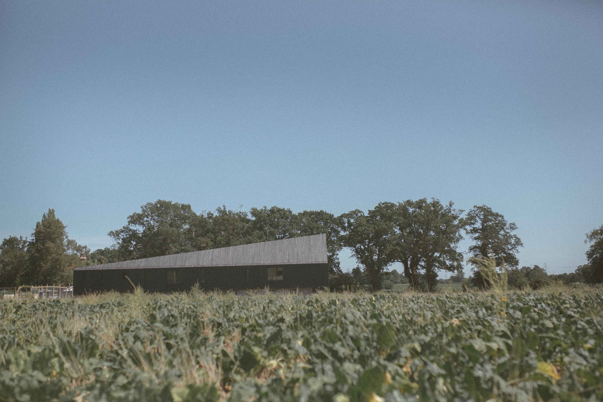 Studio_Bark_Black_Barn_Exterior-wide-4